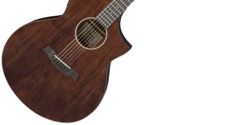 Ibanez Aew40cdnt Exotic Wood Acoustic Electric Natural